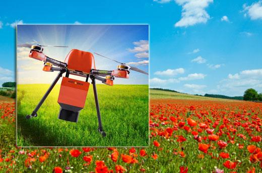 campo_drone520