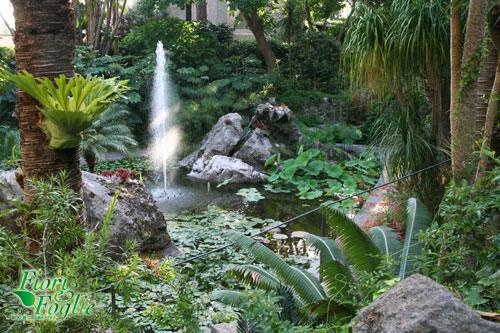 Giardini la mortella un esempio di turismo verde da for Laghetti nei giardini