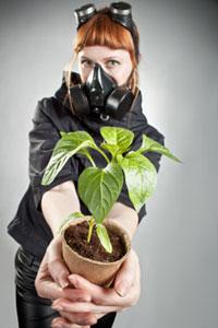 piante_ossigeno200