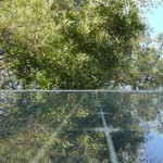 pannelli_solari_alberi500