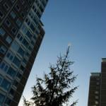 albero_di_natale_citta250
