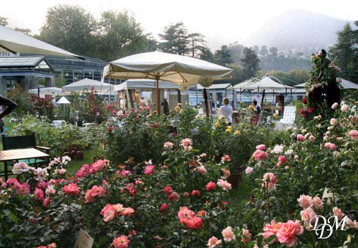 orticolario520 Tra fiori e profumi: questo weekend cè Orticolario