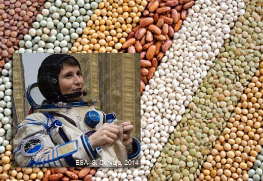cristoforetti legumi520 Menù dellastronauta: a base di legumi e frutti di bosco
