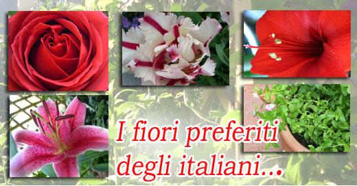 fiori preferiti520 Rose rosse, gigli e erbe aromatiche: Bakker scopre il verde che piace agli italiani