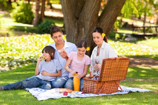 picnic520