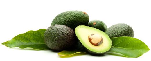 avocado520