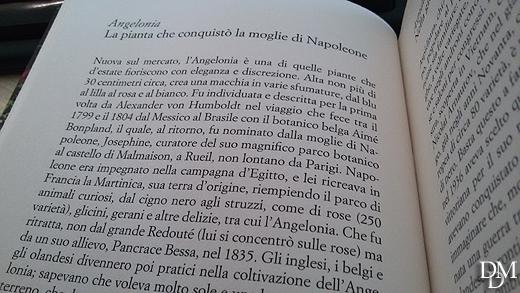 libro_cercatemiingiardino1