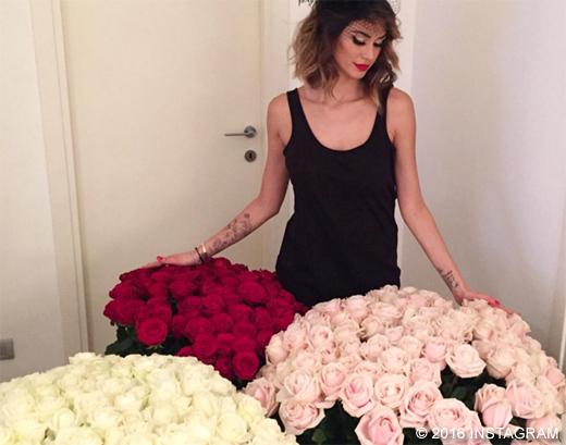 satta_rose_boa520
