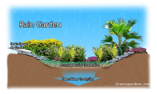 rain_garden_struttura520