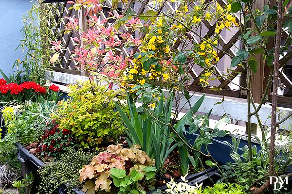 Un terrazzo fiorito low cost si pu fare fiori e foglie for Fiori da terrazzo