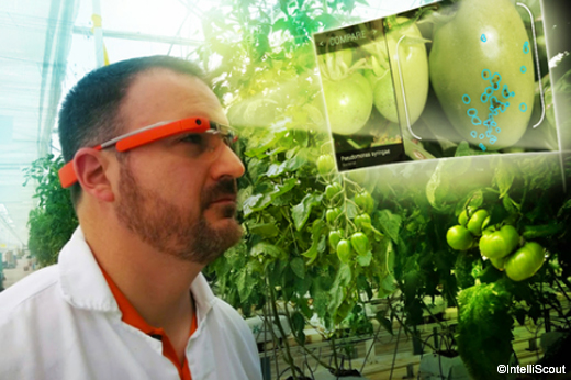 google_glass_agricoltura2