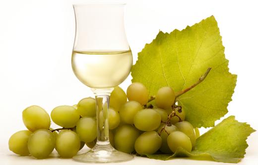 vino_uva520