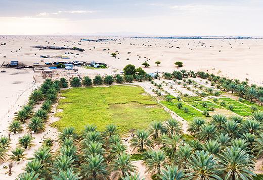 deserto_verde_arabia520