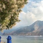 tamerici_spiaggia520