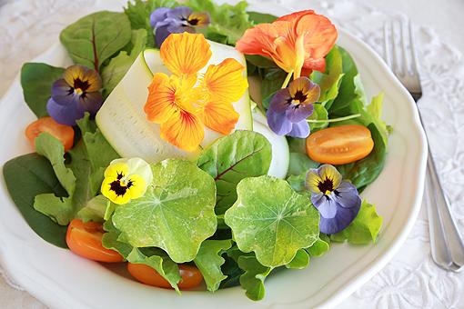 fiori_da_mangiare510