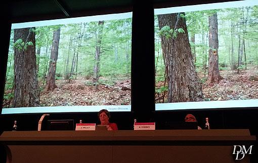convegno_alberi1
