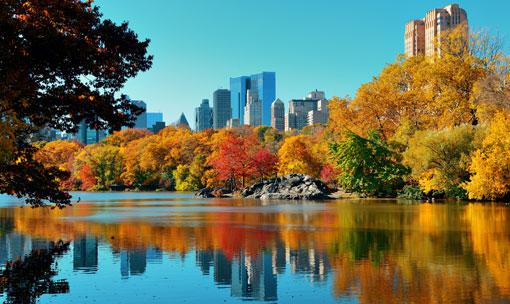 newyork_autunno510