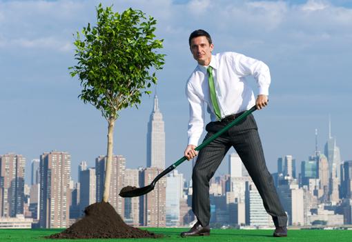 piantare_alberi_citta510