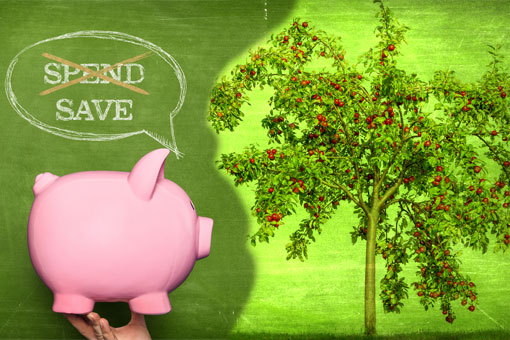 risparmio_verde510
