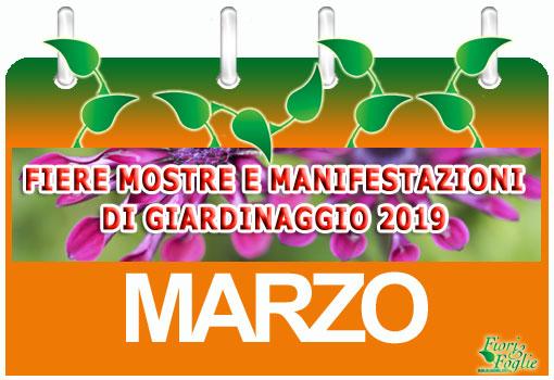 Calendario Eventi Ostuni 2020.Calendario Mostre Visite Ed Eventi Marzo Fiori E Foglie