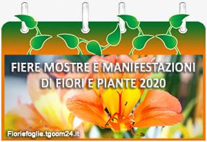 Calendario Mostre e Manifestazioni di Giardinaggio 2020