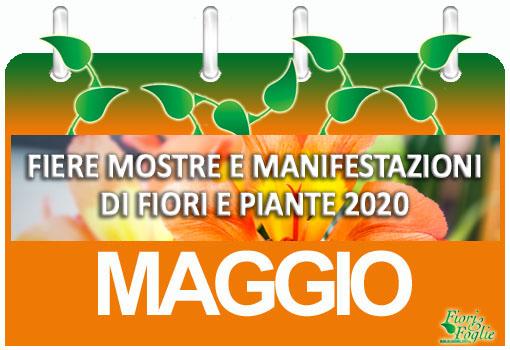Calendario Mostre Visite Ed Eventi Maggio Fiori E Foglie