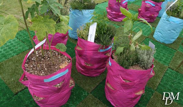 Nell'Orto Matto gli ortaggi crescono in sacchi a tasche