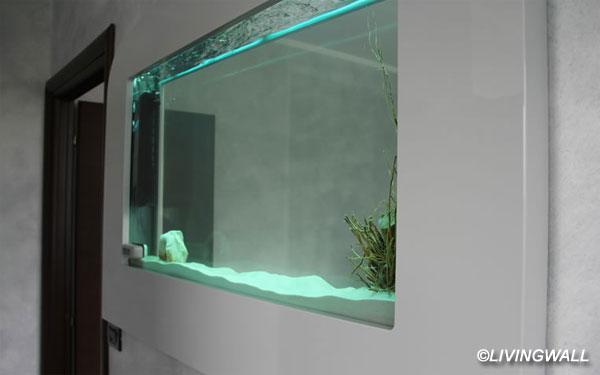 Nella parete di casa vivono piante tropicali e le for Acquario prezzi