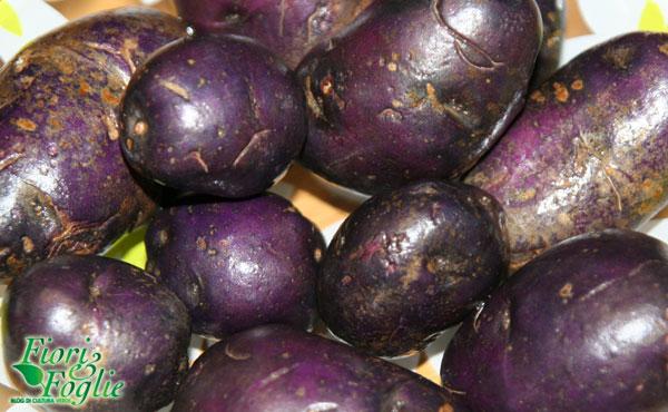 patate_viola1