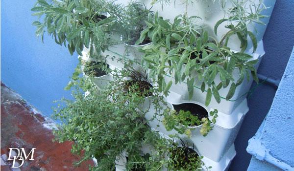L'orto verticale di Urban Green Revolution
