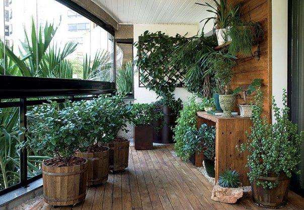 Lo zen e l\'arte di abbellire un balcone - Forum Giardinaggio