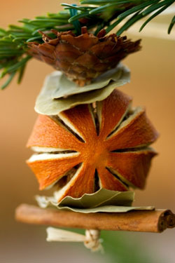 L 39 albero di natale con arance e spezie fiori e foglie - Arance decorazioni natalizie ...