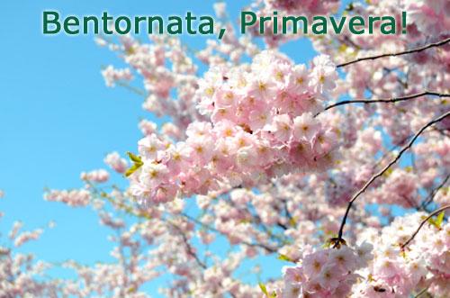 Primavera benvenuta500 e ufficiale, oggi inizia la primavera (e i