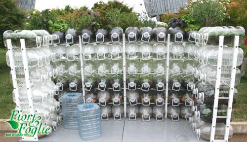 Orto-balcone nelle bottiglie: ecologico ed economico | Fiori e Foglie