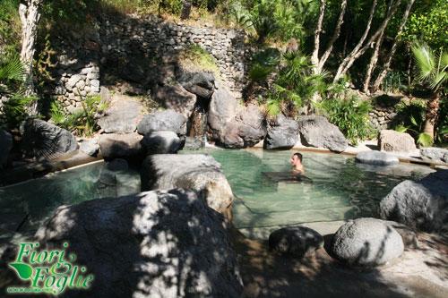 Bagno Giapponese Terme Ischia : Parco termale del negombo piscine e benessere nel verde di ischia