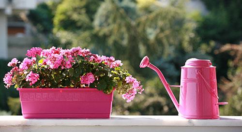 Annaffia i fiori, gli agenti gli sequestrano la canna da giardino ...