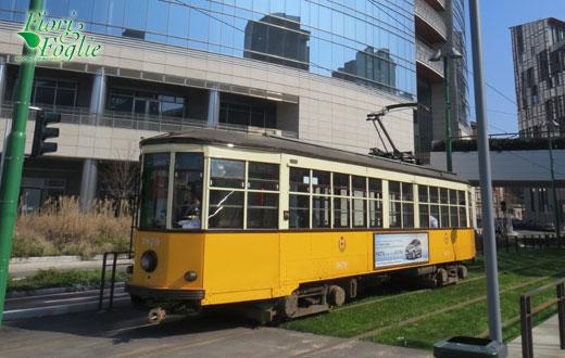 tram_prato520