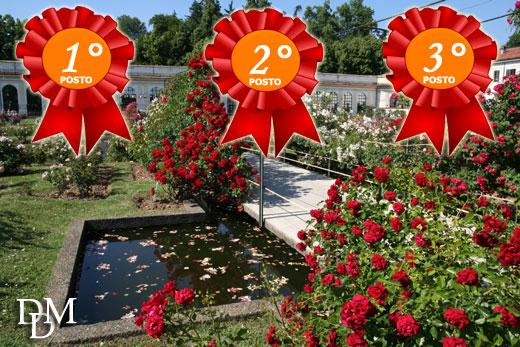 concorso rose520 Concorso Internazionale della Rosa, Monza 2014: le foto di tutte le rose vincitrici