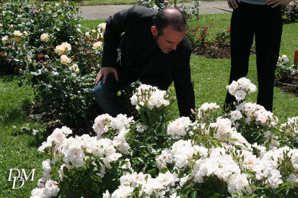 L'ibridatore Dalla Libera con la sua rosa